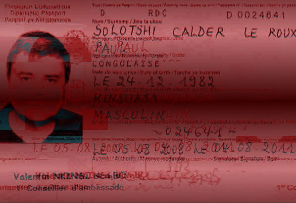 Поддельный паспорт Пола ле Ру